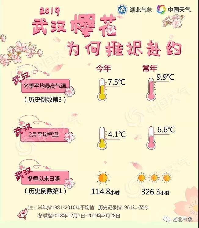 2019年武汉樱花预报出炉:3月25日初放,较往年推迟10天